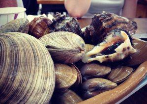 mudfest_shellfish