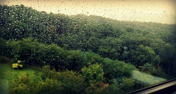 Rain rain rain!