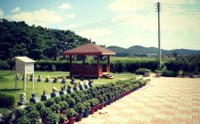 Outside Bunae Elementary