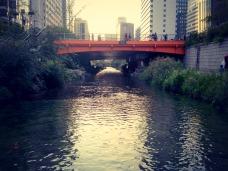 Scene from below, on the stream.