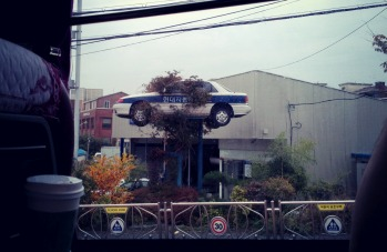 Driving along Dangjin, we all came to realize cars come from trees