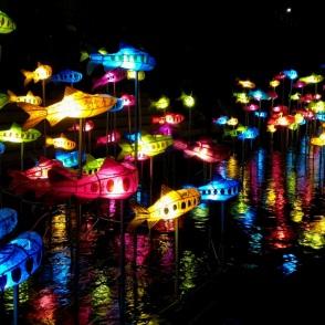 fish_lanterns