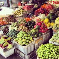 Fruit, fruit, and more fruit